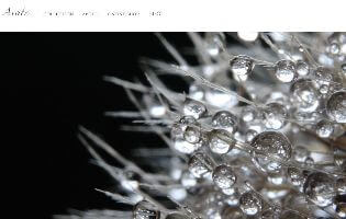 Avate http://www.avate.jp/ 成田 優(ジュエリーCAD・アントレ) シンプルなジュエリーをオーダーメイドで作るAvate