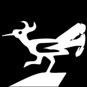 ロードランナーはアメリカ南部に実存する「オオミチバシリ」という鳥。