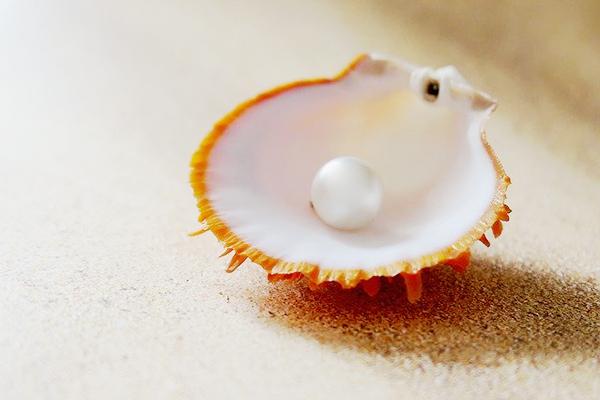 6月 パール(真珠) 石言葉:富と健康・長寿・芸術的センスの増強