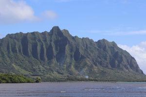 ハワイアンジュエリーに刻まれる模様は、海や山などハワイに息づく自然をモチーフとして刻まれています。